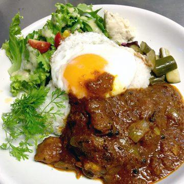 南インド風薬膳チキンカレー<br>South Indian medicine chicken curry
